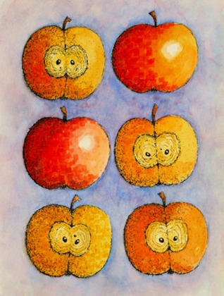Apples, Apples, Apples II - B